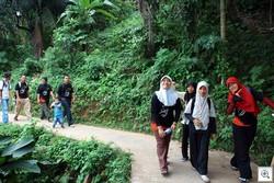 Hiking-palanta2