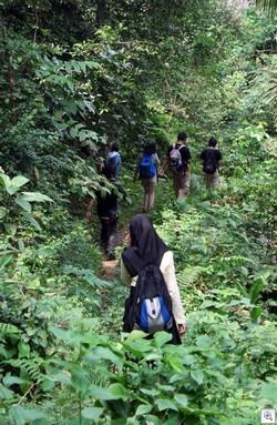 Hikingpalanta1