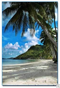 Sikuai paradise
